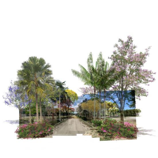 BAHIA-PIQUEROS-INTEMPERIE-STUDIO-1