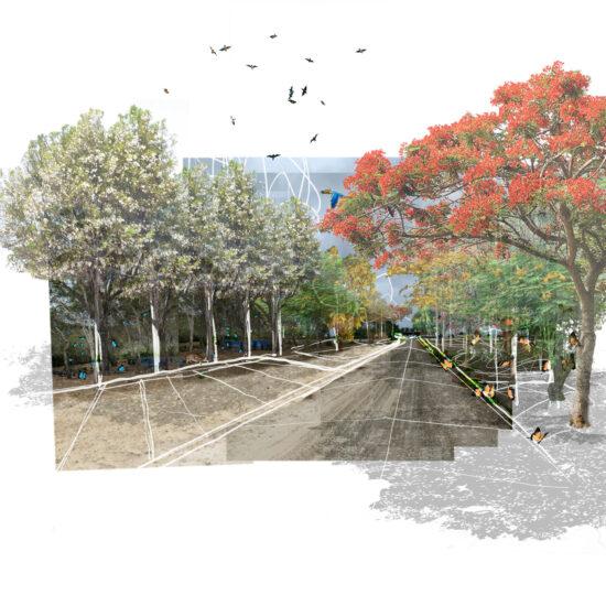 BAHIA-PIQUEROS-INTEMPERIE-STUDIO-14
