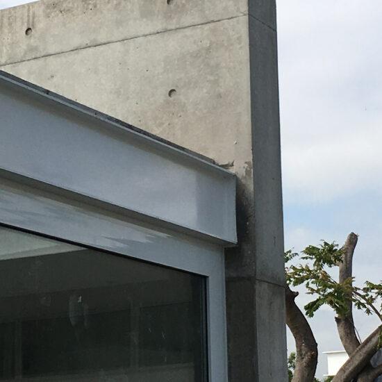 una-casa-dos-arboles-visita-1